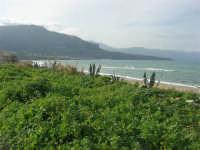 C/da Magazzinazzi - il mare d'inverno - 11 gennaio 2009   - Alcamo marina (2445 clic)