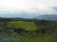 campagna alcamese e case di periferia - 23 febbraio 2009   - Alcamo (2175 clic)
