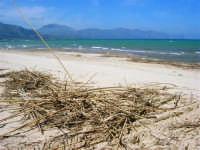 zona Canalotto: la spiaggia nel giorno della Pasquetta - 9 aprile 2007  - Alcamo marina (1007 clic)