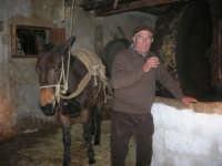 Il Presepe Vivente di Custonaci nella grotta preistorica di Scurati (grotta Mangiapane) (152) - 26 dicembre 2007   - Custonaci (1034 clic)