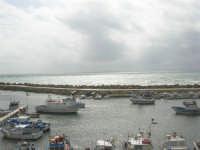 il porto - 1 marzo 2009  - Marinella di selinunte (3643 clic)