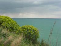 vista sul Golfo di Castellammare - 22 marzo 2009  - Castellammare del golfo (1105 clic)