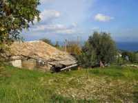 sulla montagna nei pressi della Baia di Guidaloca - 8 dicembre 2009  - Castellammare del golfo (1550 clic)