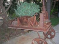 antico attrezzo per la pigiatura dell'uva esposto nel giardino del Ristorante Panorama Garden, in contrada Sangiovannello - 29 luglio 2007  - Erice (1412 clic)