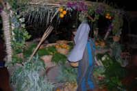 Presepe Vivente animato da alunni dell'Istituto Comprensivo G. Pascoli (2) - 22 dicembre 2007  - Castellammare del golfo (702 clic)