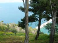 panorama dal Belvedere - 1 maggio 2007  - Castellammare del golfo (734 clic)