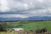 montagne innevate ad est - vigneti in primo piano - 13 febbraio 2009   - Alcamo (2324 clic)