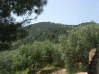 Baglio Ardigna - esterno con panorama - 17 maggio 2009  - Salemi (2711 clic)