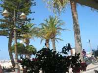 giardino pubblico e spiaggia - 8 agosto 2009   - San vito lo capo (1679 clic)