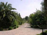 il giardino del Baglio Trinità - 22 aprile 2007  - Castelvetrano (1166 clic)