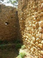 sulla rupe i ruderi del Castello Eufemio, di epoca medioevale - 4 ottobre 2007   - Calatafimi segesta (708 clic)