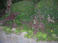 antico aratro esposto nel giardino del Ristorante Panorama Garden, in contrada Sangiovannello - 29 luglio 2007  - Erice (3055 clic)