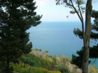 panorama dal Belvedere - 1 maggio 2007  - Castellammare del golfo (746 clic)