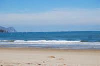 Spiaggia Plaja - volo di gabbiani - 21 febbraio 2009  - Castellammare del golfo (1902 clic)