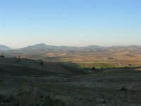 i campi, le dolci colline ed in fondo il monte Bonifato - 2 ottobre 2007   - Poggioreale (1163 clic)