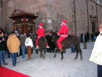 1ª Sfilata Asini a cura della Ass. Cultura Turismo Equestre LA STAFFA - 26 dicembre 2006  - Alcamo (1096 clic)