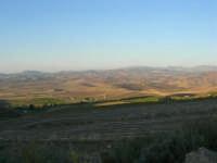 i campi e le dolci colline - 2 ottobre 2007   - Poggioreale (1243 clic)