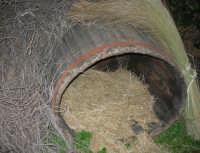Il Presepe Vivente di Custonaci nella grotta preistorica di Scurati (grotta Mangiapane) (161) - 26 dicembre 2007   - Custonaci (1135 clic)
