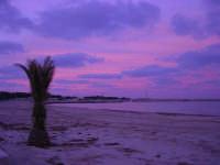 all'imbrunire cielo e mare si tingono di rosa - 27 gennaio 2008  - San vito lo capo (911 clic)