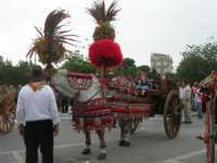 carretti siciliani in piazza Della Repubblica - 18 maggio 2008   - Alcamo (651 clic)