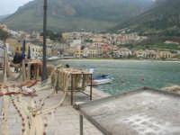 al porto - 22 marzo 2009  - Castellammare del golfo (957 clic)