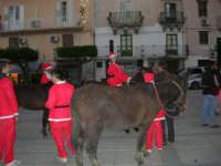 1ª Sfilata Asini a cura della Ass. Cultura Turismo Equestre LA STAFFA - 26 dicembre 2006  - Alcamo (1225 clic)