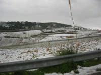 la campagna coperta di bianco - 15 febbraio 2009   - Alcamo (2421 clic)