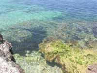 Golfo del Cofano: un mare stupendo! - 4 luglio 2009   - San vito lo capo (1100 clic)
