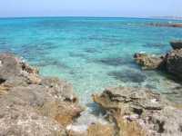 Golfo del Cofano - 21 agosto 2009  - San vito lo capo (1493 clic)