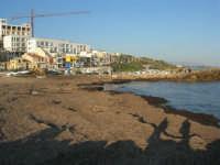 distesa di alghe - case sul lungomare - 6 aprile 2008   - Marinella di selinunte (731 clic)