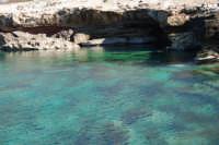 Golfo del Cofano: mare stupendo - 24 febbraio 2008  - San vito lo capo (553 clic)