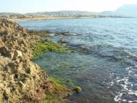 Golfo di Bonagia - 27 aprile 2008  - Cornino (868 clic)