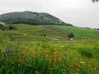 in mezzo alle montagne la zona archeologica, sulla sinistra parte del Tempio - 12 aprile 2007   - Segesta (2222 clic)