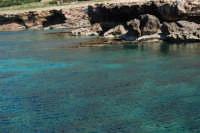 Golfo del Cofano: mare stupendo - 24 febbraio 2008  - San vito lo capo (496 clic)