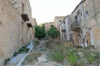 ruderi del paese distrutto dal terremoto del gennaio 1968 - 2 ottobre 2007  - Poggioreale (1125 clic)