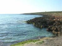 Golfo di Bonagia: mare e costa sotto il Monte Cofano  - 27 aprile 2008  - Cornino (913 clic)