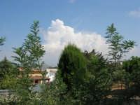 alberi e nubi bianche - 30 luglio 2008   - Alcamo (700 clic)