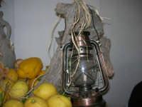 Gli altari di San Giuseppe - limoni da offrire ai visitatori - 18 marzo 2009  - Balestrate (6140 clic)