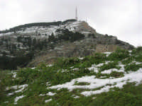 alle pendici del monte Bonifato innevato - 15 febbraio 2009   - Alcamo (2102 clic)