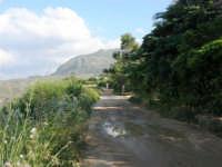 strada sterrata lungo il litorale tra Castellammare e Guidaloca - 1 maggio 2007  - Castellammare del golfo (690 clic)