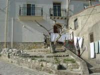 per le vie del paese - 23 aprile 2006   - Prizzi (1811 clic)