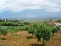 panorama: guardando verso il Golfo di Castellammare, in direzione del Castello di Calatubo - 30 aprile 2007  - Alcamo (887 clic)