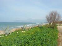 C/da Magazzinazzi - il mare d'inverno - 11 gennaio 2009   - Alcamo marina (2935 clic)