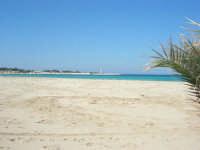 la spiaggia, il mare, il faro - 24 febbraio 2008   - San vito lo capo (591 clic)