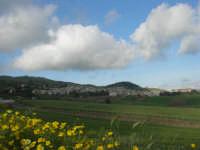 Camporeale immersa nel verde - 25 aprile 2008  - Camporeale (3838 clic)