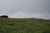 monte Erice - panorama . . . con foschia - 1 maggio 2009  - Erice (1821 clic)