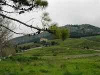 in mezzo alle montagne la zona archeologica ed il Tempio - 12 aprile 2007   - Segesta (2024 clic)