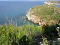 il litorale e le calette tra Castellammare e Guidaloca - 1 maggio 2007  - Castellammare del golfo (815 clic)