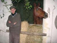 Presepe Vivente - 26 dicembre 2008  - Balata di baida (2535 clic)
