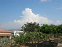 alberi e nubi bianche - 30 luglio 2008   - Alcamo (645 clic)